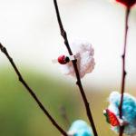 Вязание цветов крючком