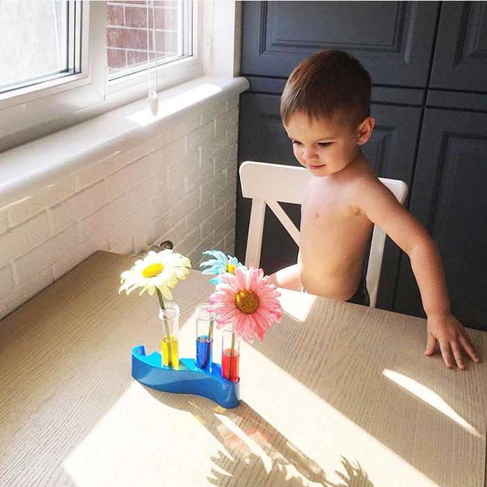 Опыт с цветами
